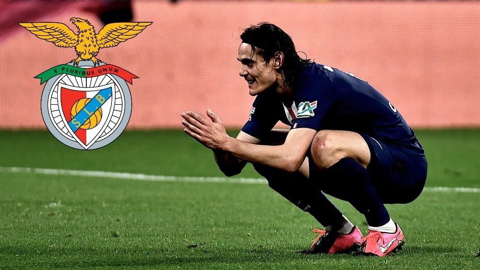 Benfica admite